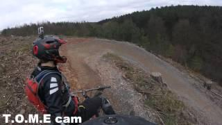 Best of Cannock Chase