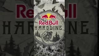 The run from Bernard Kerr at the 2019 redbull hardline