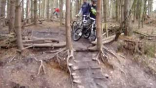 Werewolves Drop at Cannock Chase