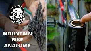Mountain Bike Anatomy - 50 parts in 5 minutes